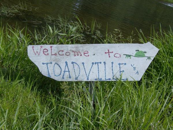 toadville.jpg